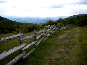 Grayson Highlands State Park in Southwest Virginia . . . One of my favorite places in the world