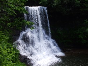 The Cascades, a waterfall in Giles County in SW Virginia.  05-31-2010.