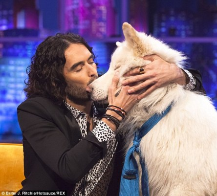 russell brand with dog