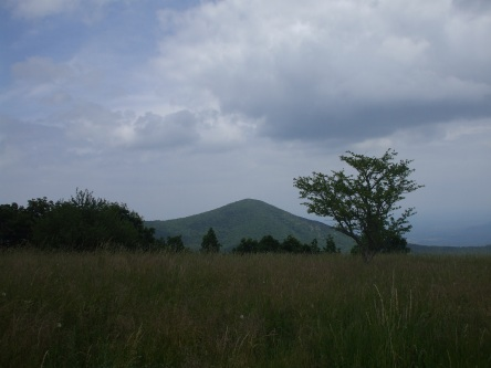 Standing on Cole Mountain, looking back at Mt. Pleasant