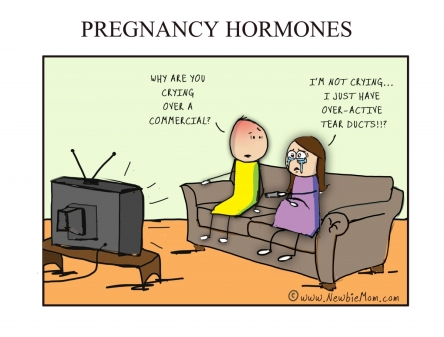 pregnancy hormones cartoon
