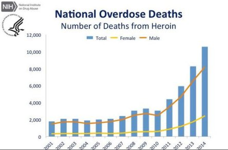 heroin-death-stats