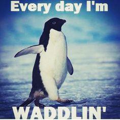 waddling