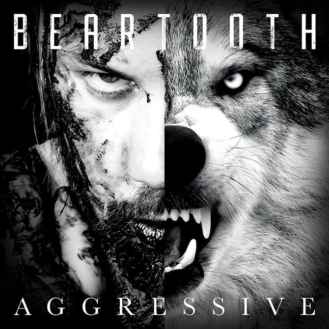 aggressive-beartooth