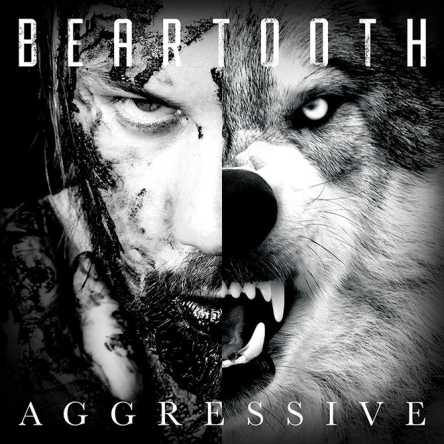 aggressive-beartooth